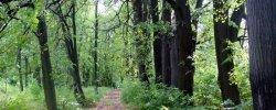 Особо Охраняемые Природные Территории Воронежской Области